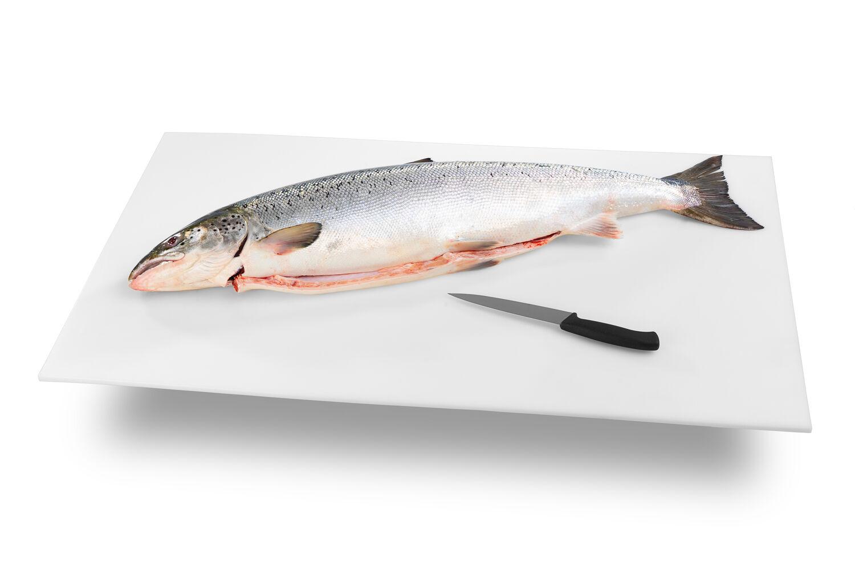 Kalan Säilyvyys Vakuumissa